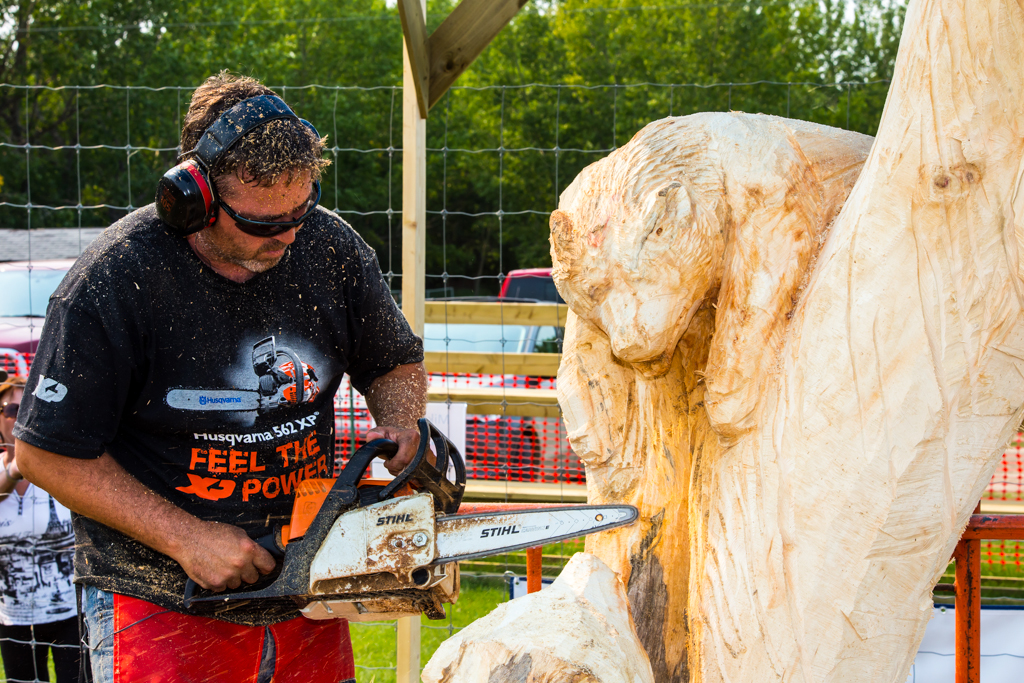 Stihl tree championship carvi chainsaw